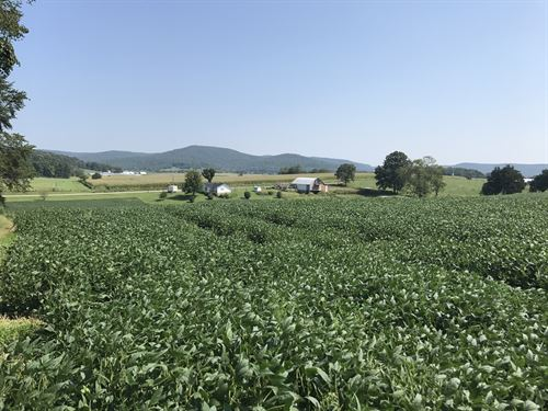 Home & 20 Acres : Albany : Clinton County : Kentucky