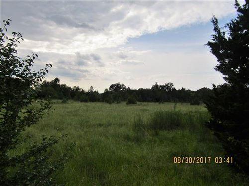 Lets Get Some Land : Paris : Lamar County : Texas