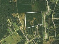 44 Acres- Tamara Lane : Callahan : Nassau County : Florida