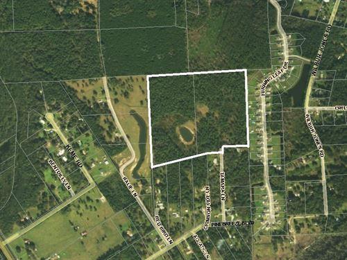 44 Acres- Tamara Lane : Callahan : Nassau County : Florida