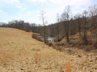 Sargent Rd - 257 Acres : Guysville : Athens County : Ohio