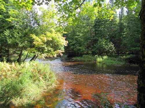 200 Acres Hwy 432, 1104252 : Trenary : Delta County : Michigan