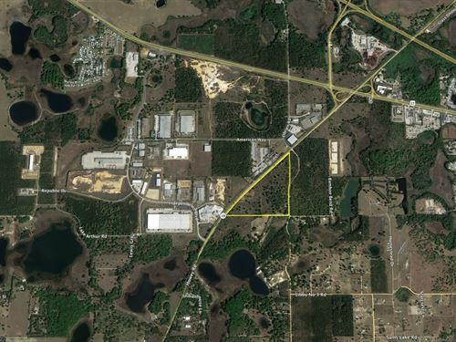 51 Acres In Groveland : Groveland : Lake County : Florida