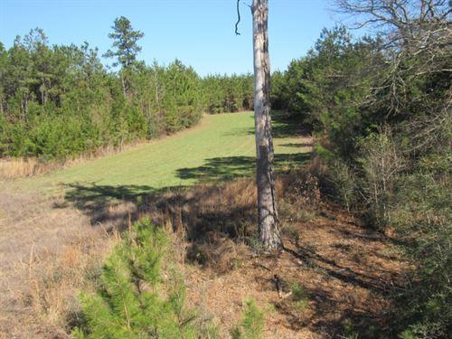 198 Acres/ Oak Grove Road : Prentiss : Jefferson Davis County : Mississippi