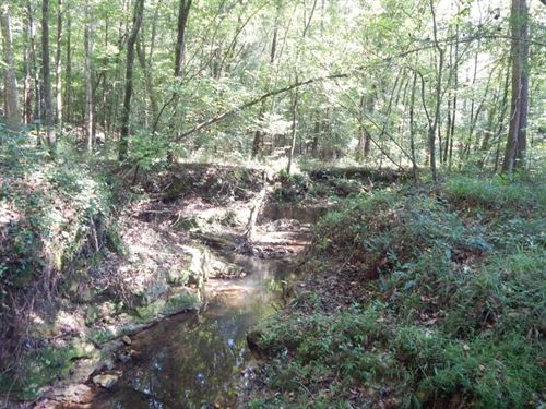 82.19 Acre Hunting Property With Cr : McComb : Pike County : Mississippi