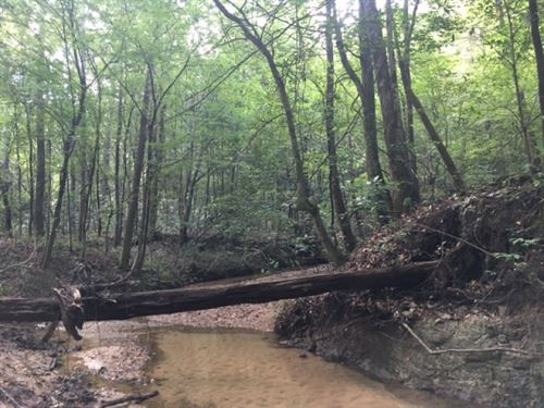 78.71 Acres With Beautiful Flowing : McComb : Pike County : Mississippi