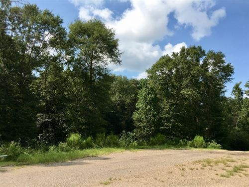 1.42 Acre Lot In North Pike School : Summit : Pike County : Mississippi