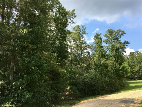 1.19 Acre Lot In North Pike School : Summit : Pike County : Mississippi