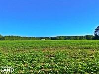 Little River Dixie Landing Farm : Little River : Baldwin County : Alabama