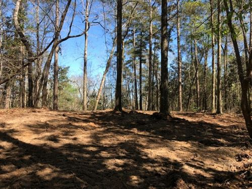 4.96 Acre Home Or Camp Site In Pike : McComb : Pike County : Mississippi