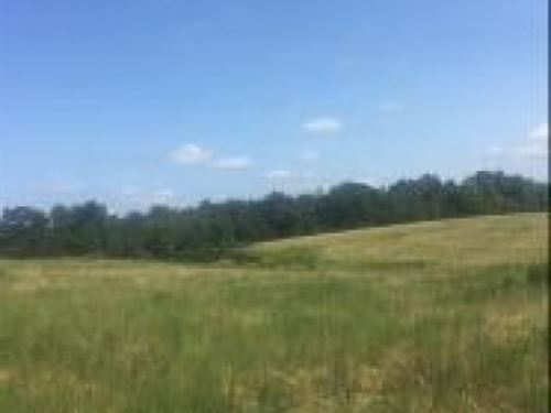 298 Acres In Panola County In Sardi : Sardis : Panola County : Mississippi