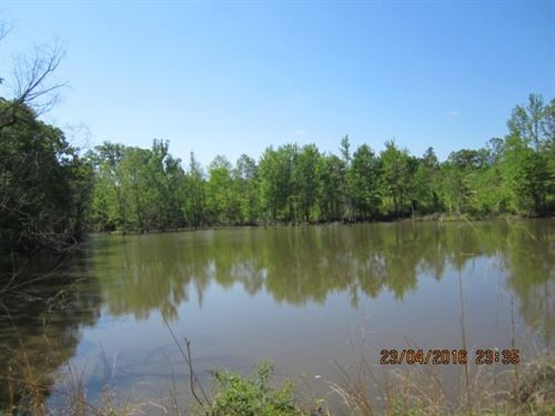 30.93 Acres In Marshall County : Holly Springs : Marshall County : Mississippi