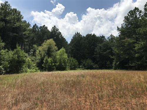Harmony Tract : Eatonton : Putnam County : Georgia