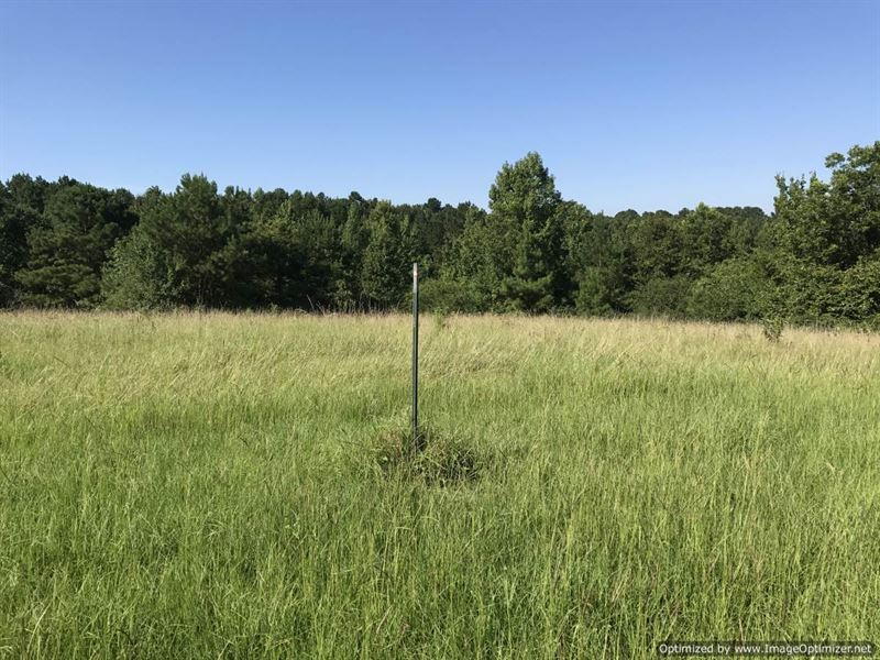 Perfect For Mini Farm Or Home Site : Hazlehurst : Copiah County : Mississippi