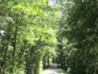 Beautiful , Protected, Nature Lover : Gray : Jones County : Georgia