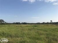 Williams Lake : Roseboro : Sampson County : North Carolina