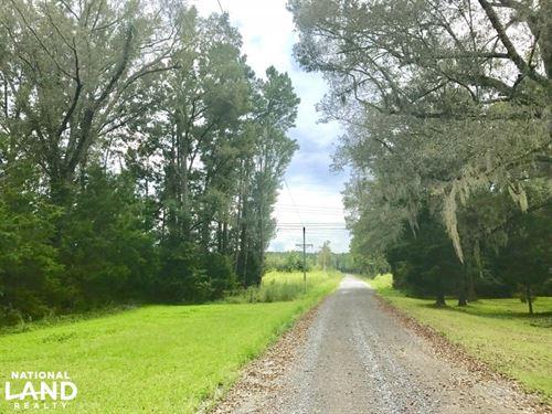 National Forest Recreational Land : Jamestown : Berkeley County : South Carolina