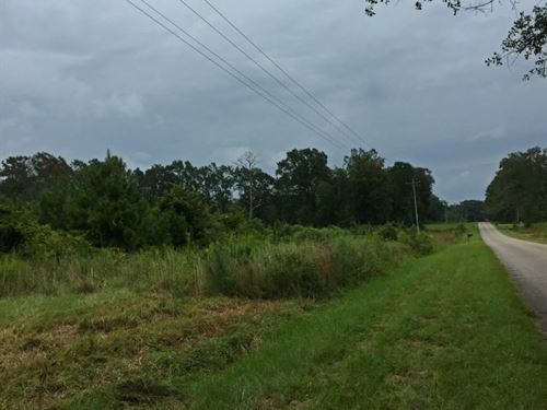 Greenville Homesite & Timber Invest : Greenville : Butler County : Alabama