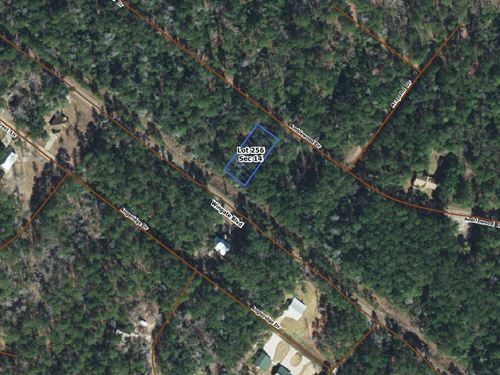 .23 Acres In Brookeland, TX : Brookeland : Jasper County : Texas