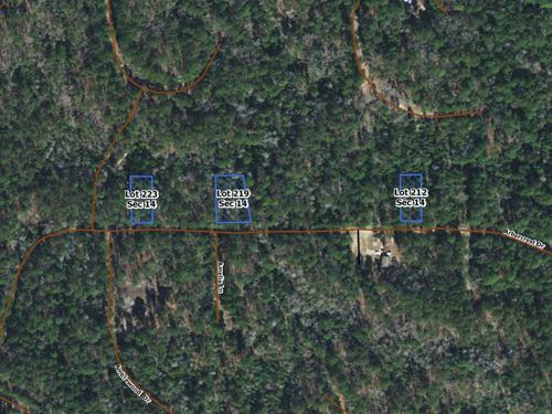 .41 Acres In Brookeland, TX : Brookeland : Jasper County : Texas