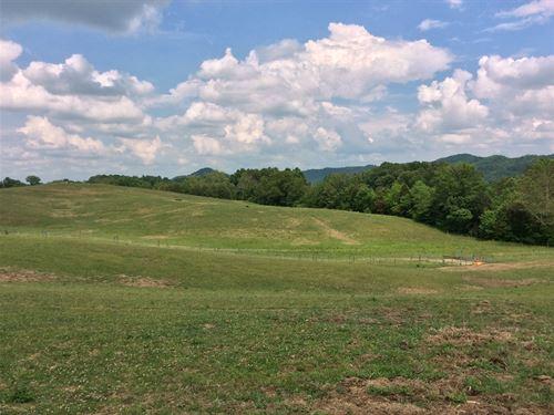 Horse Farm : Rogersville : Hawkins County : Tennessee