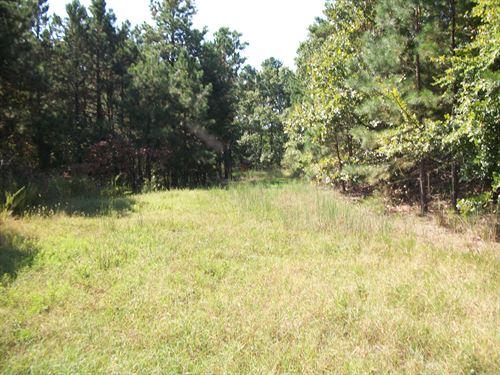 Hunters Paradise : Tahlequah : Cherokee County : Oklahoma