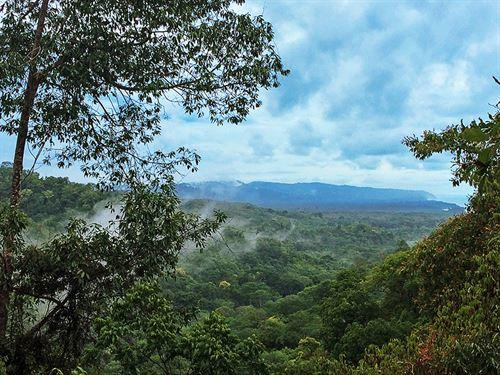 Costa Rica Eco On The Pacific : Puntarenas Finca : Costa Rica