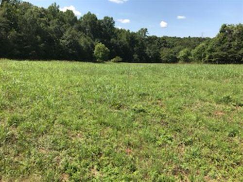 4.1 Acre Homesite In Pauline, Sc : Spartanburg : South Carolina