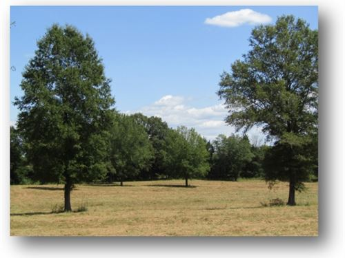 48.06 Commercial Acres In Panola : Batesville : Panola County : Mississippi