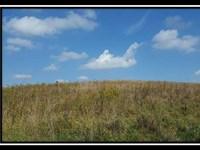 Wild Turkey Mountain : Dresden : Muskingum County : Ohio