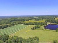 Quail Hollow Farm : Charlotte : Dickson County : Tennessee