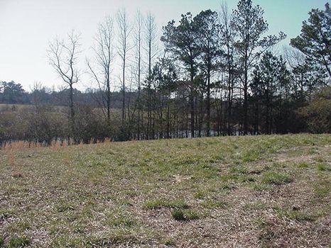 23 Acre Horse/cattle Farm : Boaz : Etowah County : Alabama