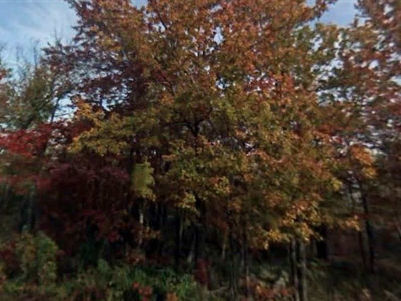 Luzerne County, Pa $94,900 Neg : Hazle Township : Luzerne County : Pennsylvania