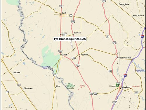 Tye Branch Spur Tract : Garnett : Jasper County : South Carolina
