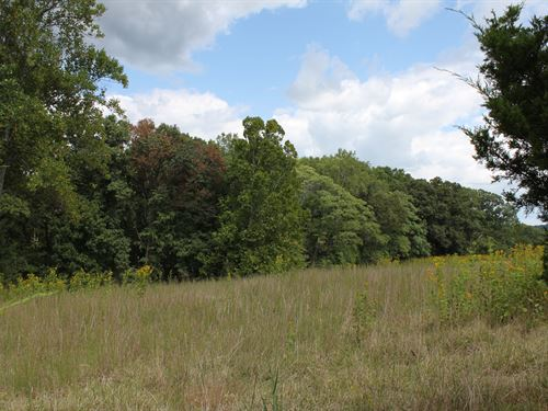 5 Acres Unrestricted Land In Va : Moneta : Bedford County : Virginia