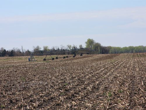 Platte River Irrigated Farm And Hun : Central City : Merrick County : Nebraska