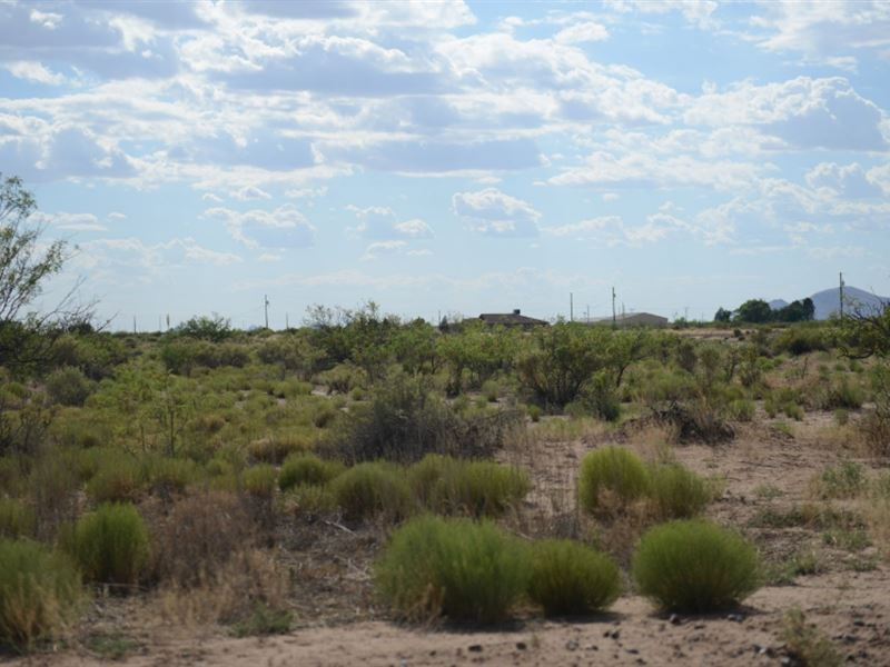 .5 Acres In Deming, NM : Deming : Luna County : New Mexico