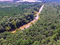 Reduced Hunting Camp On Pea River : Samson : Geneva County : Alabama