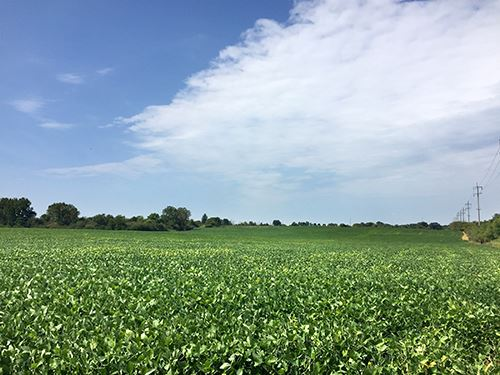 Prime Land Auction In Ohio : Brookville : Montgomery County : Ohio