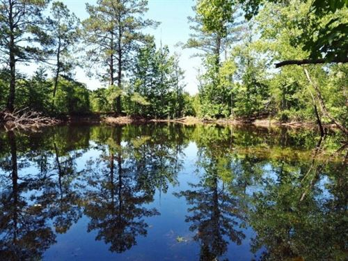 Hunting Land 53 Acres Pond Sw Missi : Magnolia : Pike County : Mississippi