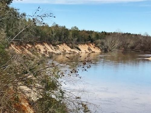 80 Acre Leaf River Tract For Sale : Hattiesburg : Forrest County : Mississippi
