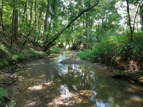 311 Acres & 8 Acres In Tennessee : Newport & Townsend : Blount County : Tennessee