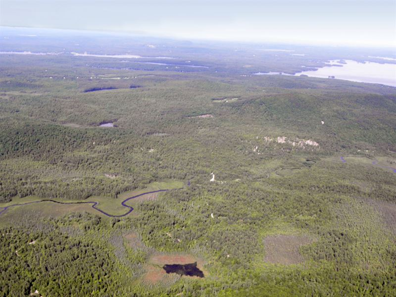 Tiger Hill Forest : Land for Sale : Sebago : Cumberland County : Maine
