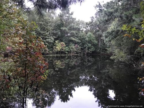 Sweet 16 Acres : Wesson : Copiah County : Mississippi