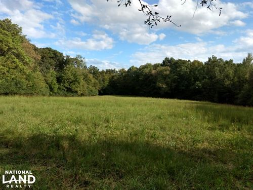 Income Producing Property/Bennett : Bennett : Chatham County : North Carolina