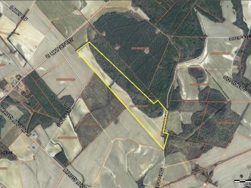 108.3+/- Acres In Marlboro County, : Bennettsville : Marlboro County : South Carolina