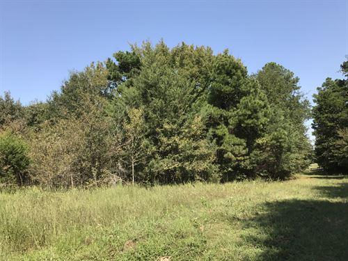 475+ Ac 3 Ponds & Trees : Como : Hopkins County : Texas