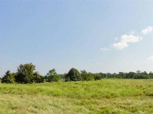 Houston County 45 Hunting Ranch : Crockett : Houston County : Texas