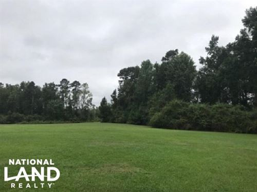 Riegelwood Recreational Homesite : Delco : Columbus County : North Carolina