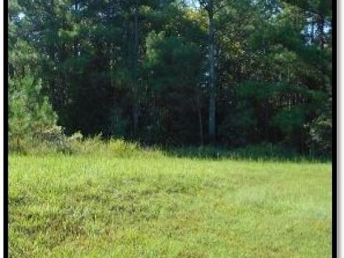 21 Acres In Lafayette County : Taylor : Lafayette County : Mississippi